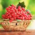 Калина: кому не можна лікуватися цією ягодою?
