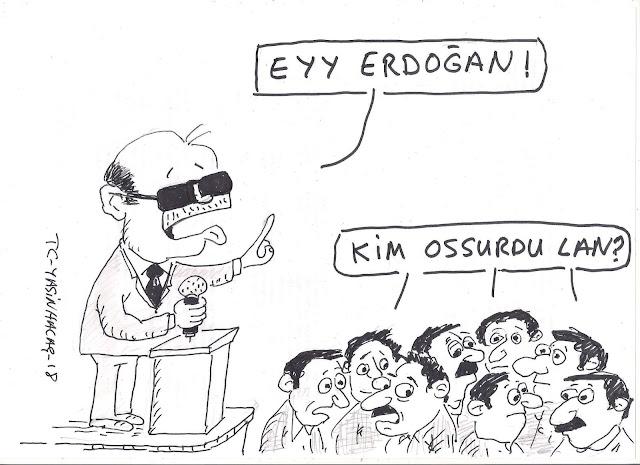 ey erdoğan karikatür
