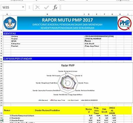Rapor Mutu PMP Format Excel