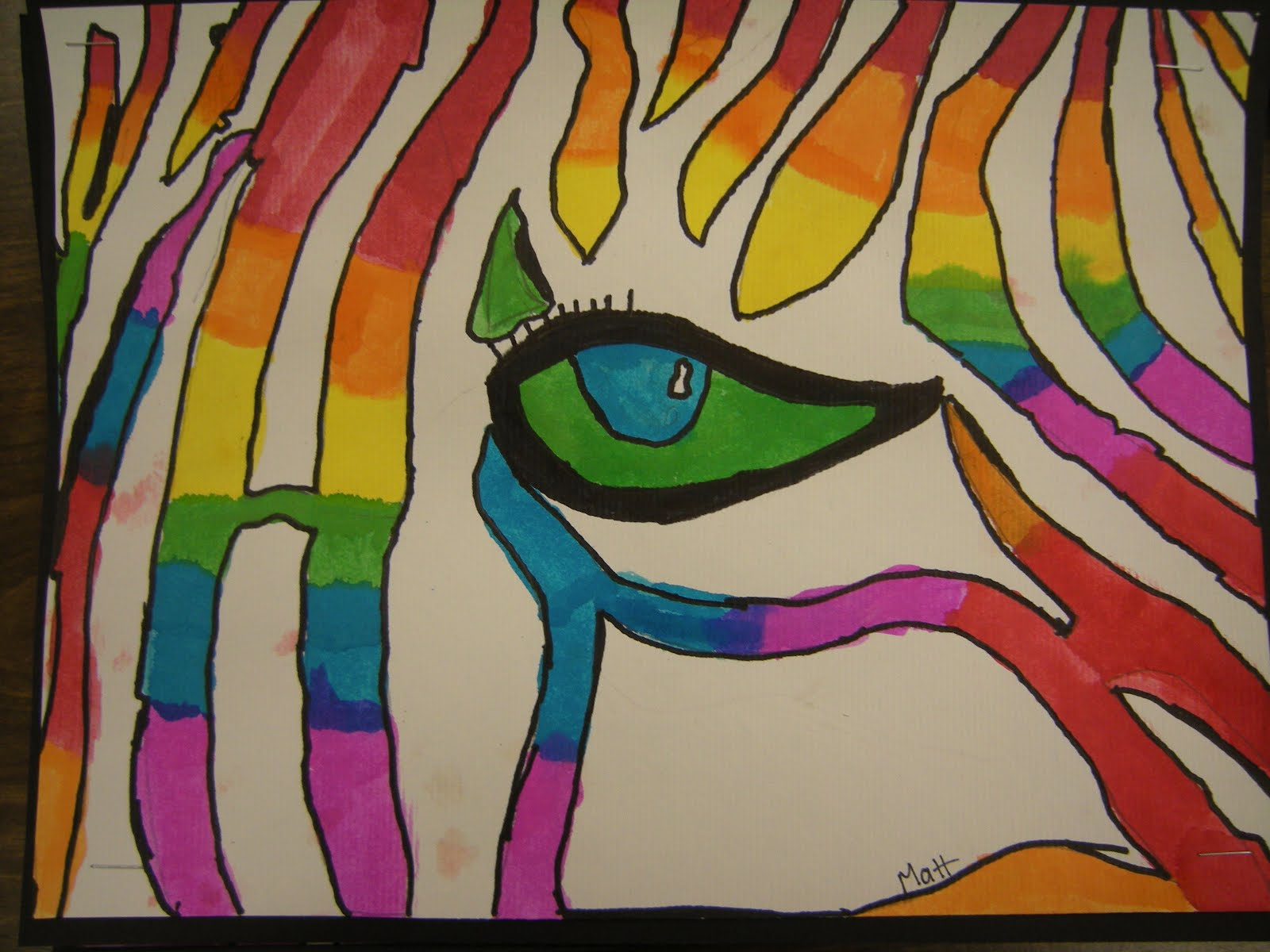 Color Wheel Zebra Eye