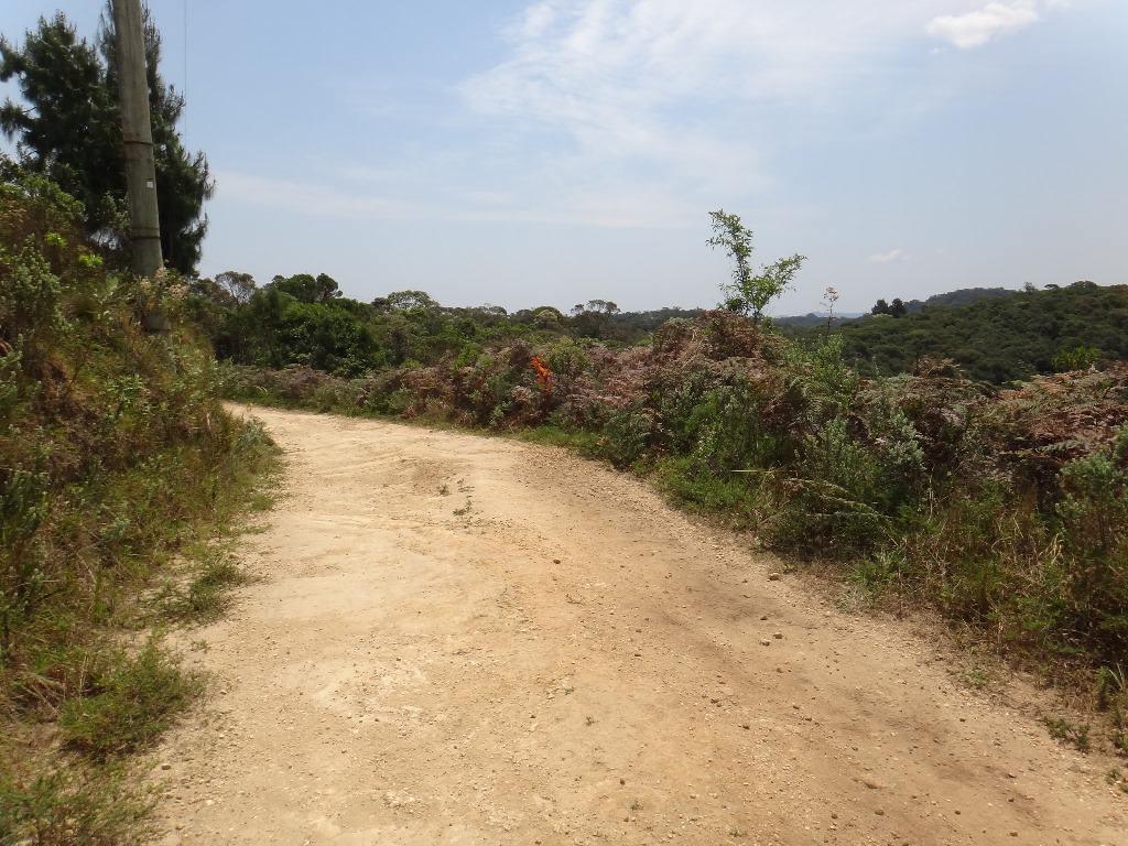 K21Campos do Jordão Corrida Trail em Campos do Jordão