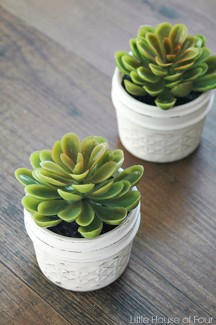Easy Dollar Store succulents