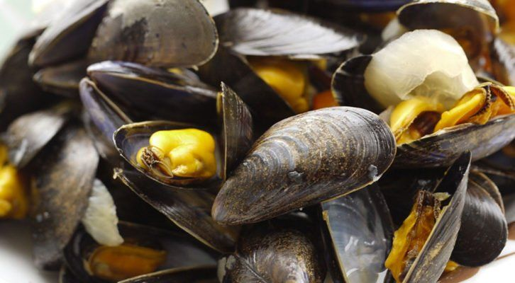Cozze italiane allevate in mare contaminate da tossine saxitossina, allarme in Italia.