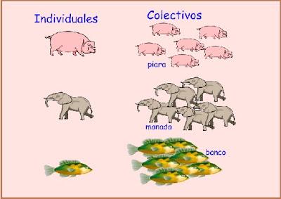 Resultado de imagen de clases de sustantivos comunes propios