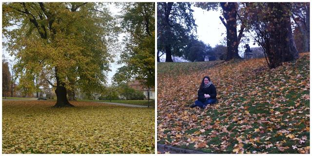 outono em Dresden, Alemanha