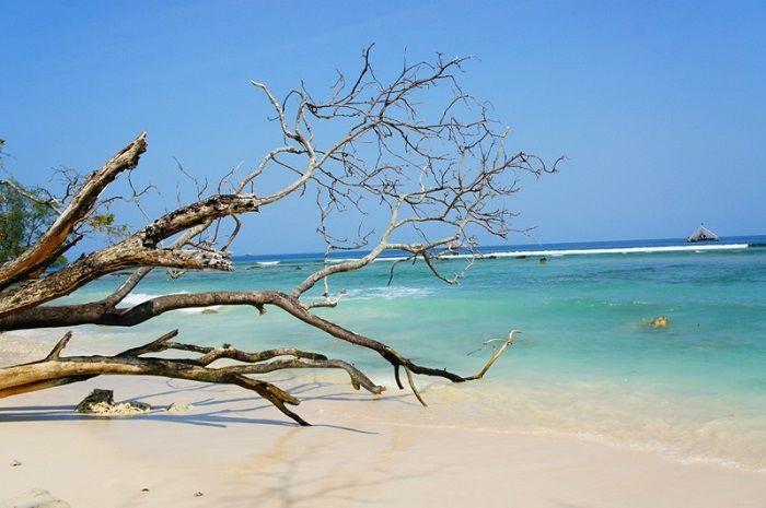 Pulau Mangir