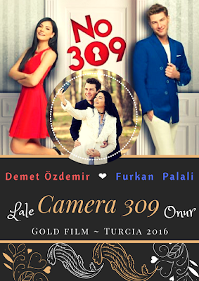 Camera 309 | Prezentare Serial NO: 309 | Distribuție