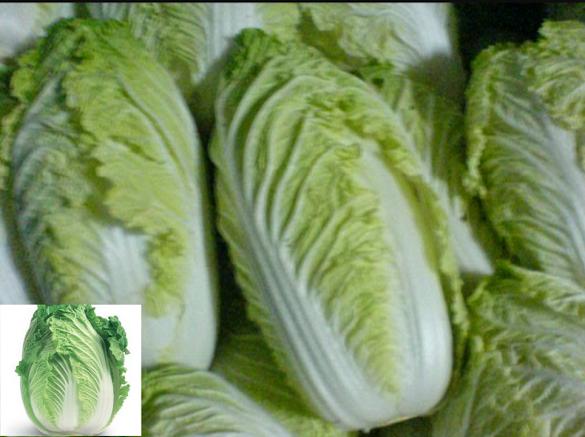 11 Khasiat Sayur Sawi Yang Sanggup Menyembuhkan Dan Mencegah Penyakit