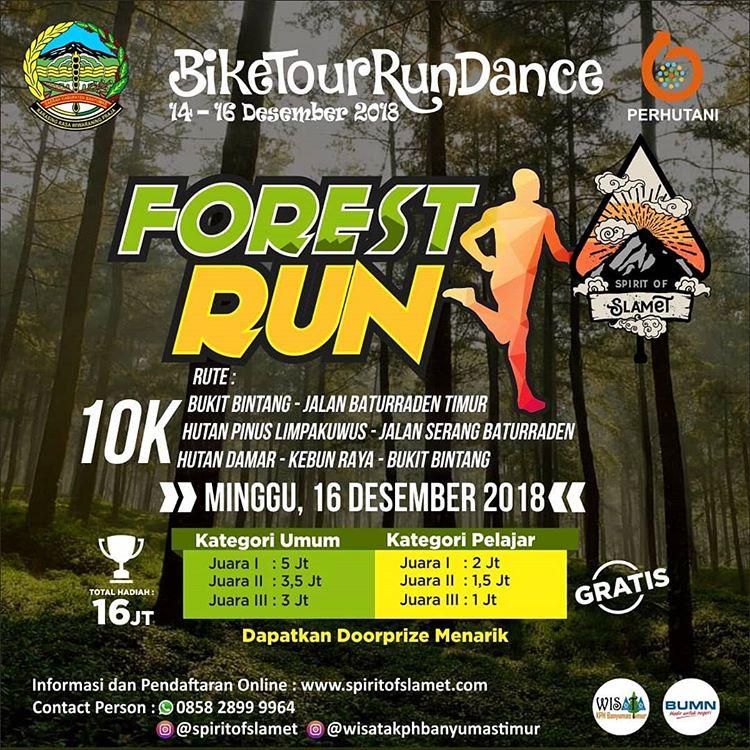 Forest Run • 2018