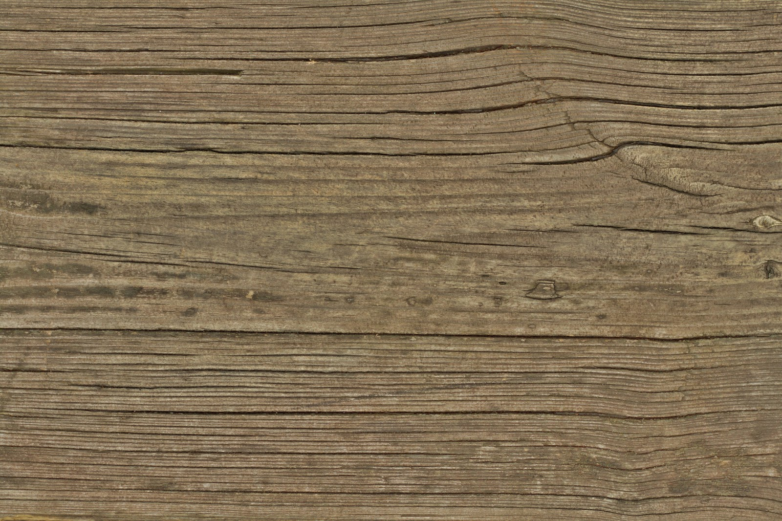 Wood dry cracked bench plank tree bark texture ver 17