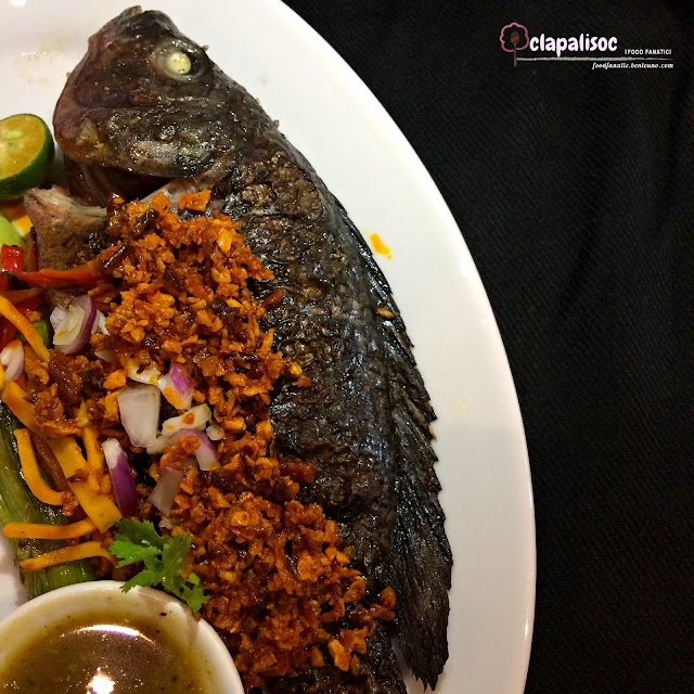 Grilled Fresh Tilapia from Sarsa Kitchen + Bar