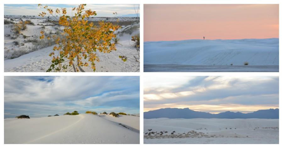 Dans les dunes de White Sands
