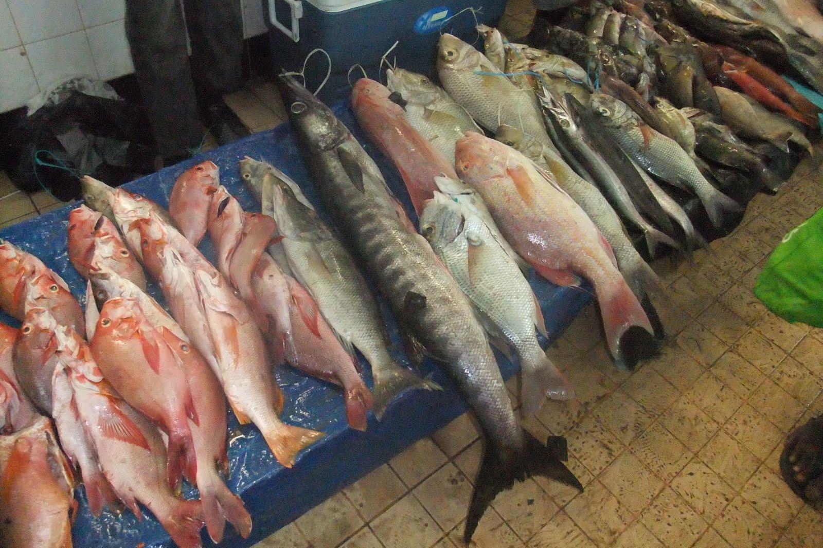 Fish Shop Haywards Heath