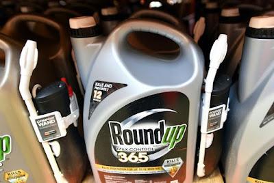 o  glifosato ingrediente do  herbicida Roundup, da empresa internacional Monsanto contribuiu para o câncer do septuagenário Edwin Hardeman, segundo o juri nos Estados Unidos,