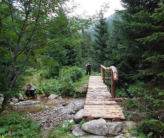 Mostek nad Jamnickim Potokiem.
