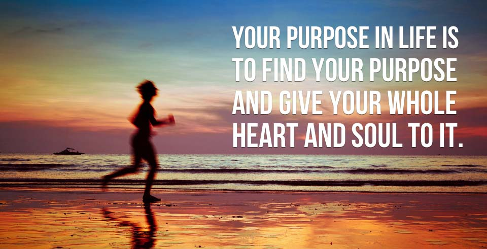 What Is The Purpose Of Life : How Finding Life Purpose Of Your Life!