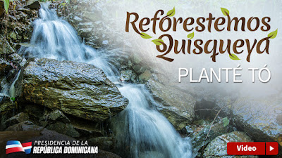 VÍDEO: Reforestemos Quisqueya. Planté tó