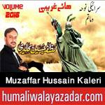 http://www.humaliwalayazadar.com/2014/10/muzafar-hussain-kalari-nohay-2010-to.html