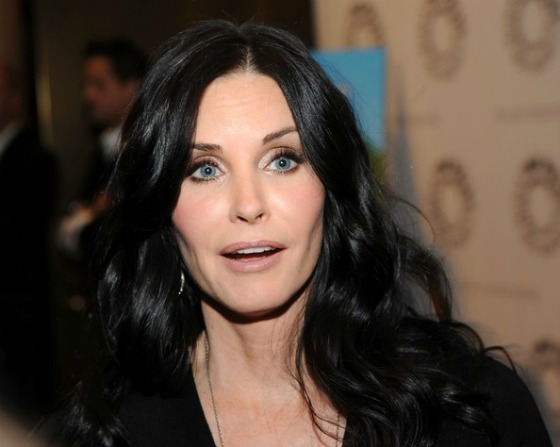 this? Is this Cher? Nope... it's courtney cox. What the heck happened ...