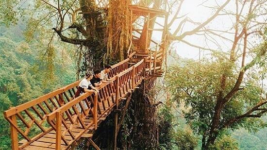Gunung Ciherang & Jembatan Kayu Gantung