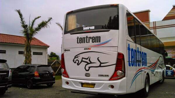 Bus Tentrem MAX rear view