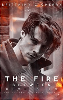 Review – The Fire Between High & Lo by Brittainy C. Cherry