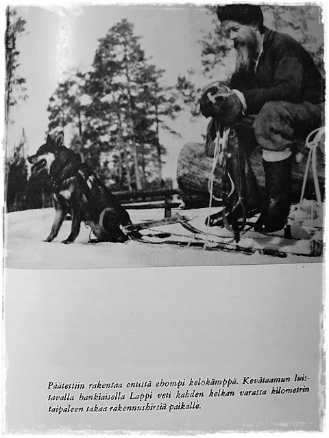 Alpiinin koira