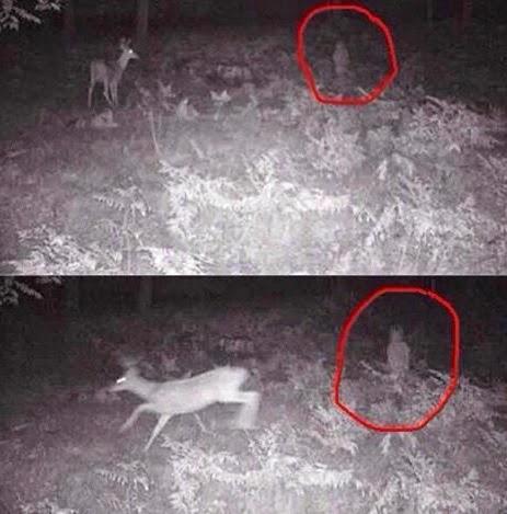 fotos de fantasmas, fotografia, sobrenatural