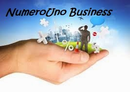 NumeroUno Business Consulting