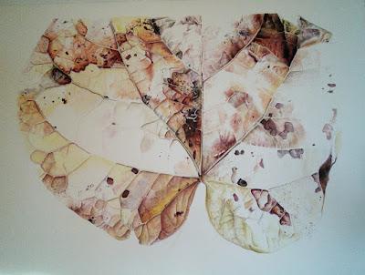 Botanical illustration of a leaf