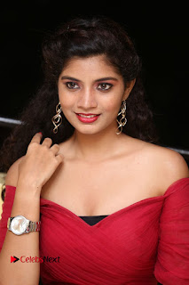 Actress Bindu Pictures in Red Dress at Attarillu Movie Press Meet  0162.JPG