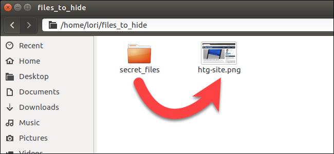 hide file