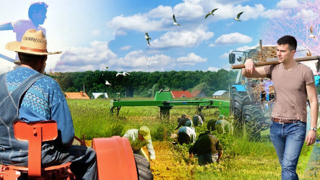 """""""Ξεζουμίζουν"""" τώρα και τους συνταξιούχους αγρότες"""