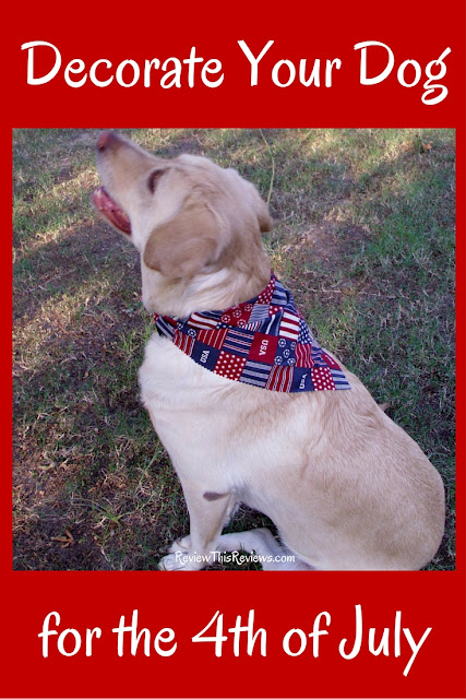 Bandanas, Collars, and Clothes: Apparel for Your Patriotic Pooch. Let's review a few ways your dog can help you show off your patriotic pride.
