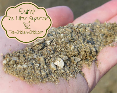 Sand: The Litter Superstar