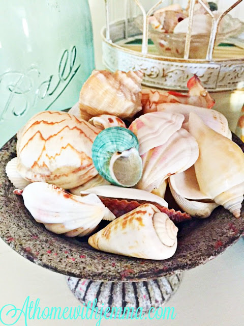 collect seashells, decorating with shells, adding shells to a vignette