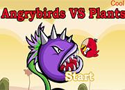 Angrybirds vs Plants