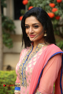 Actress Vimala Raman Stills in Beautiful Pink Salwar Kameez at (ONV) Om Namo Venkatesaya Press Meet  0173.JPG