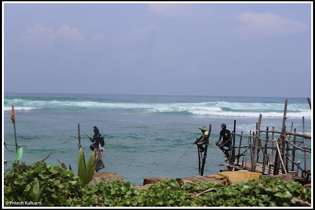 Traditional fishing in Sri Lanka