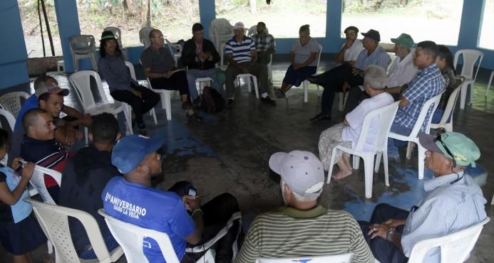 Ecologistas denuncian Falcondo construye carretera en Loma Miranda