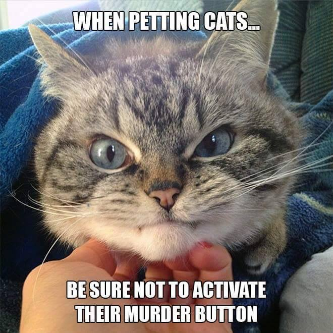 Be sure not to activate their murder button