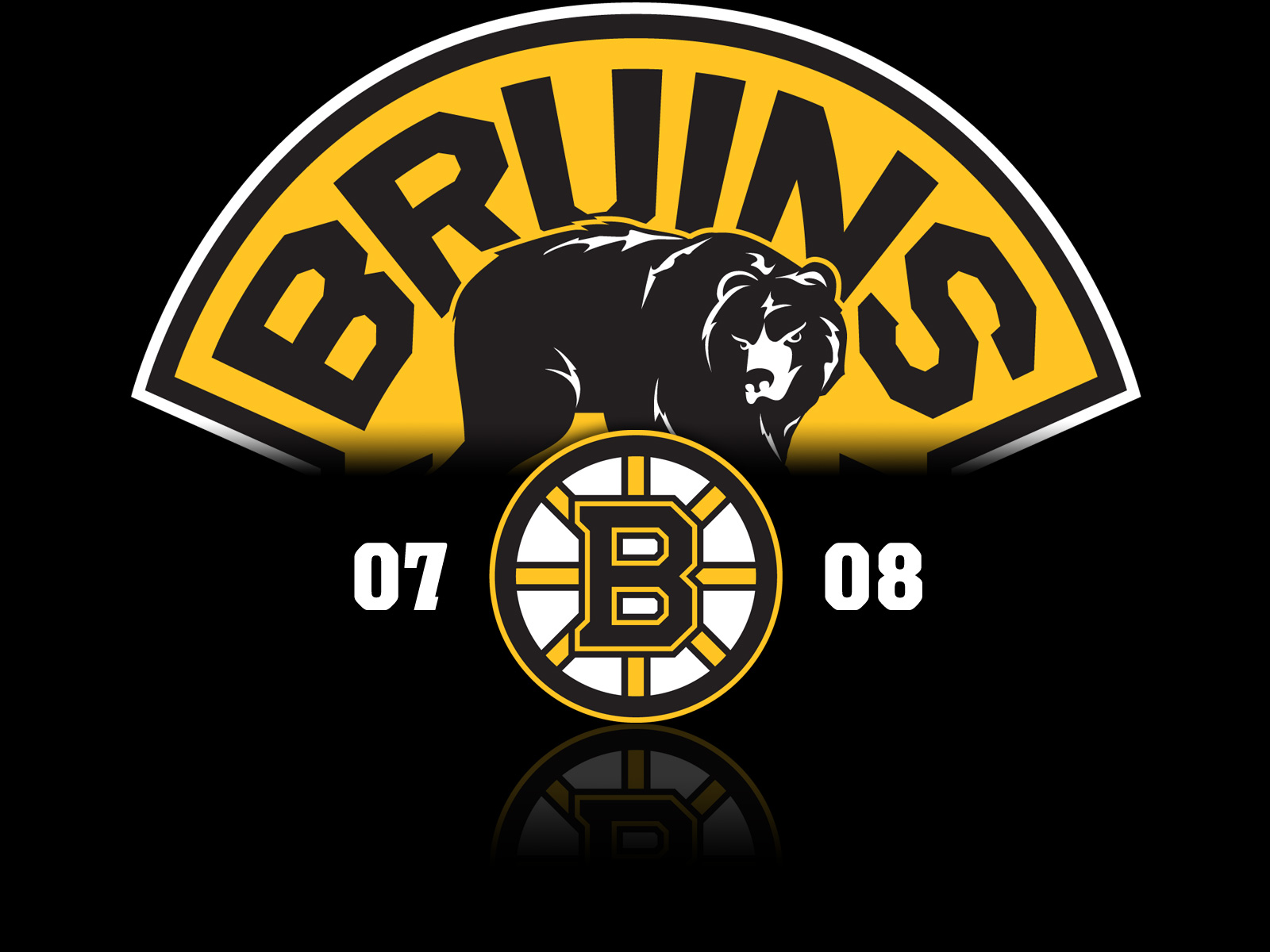 bruins - photo #16