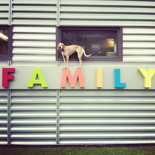 Maddie on Family Sign