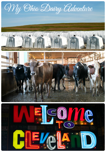 My foodie travels learning all about Ohio's dairy farms & industry in Cleveland & the nearby Ohio Amish country.