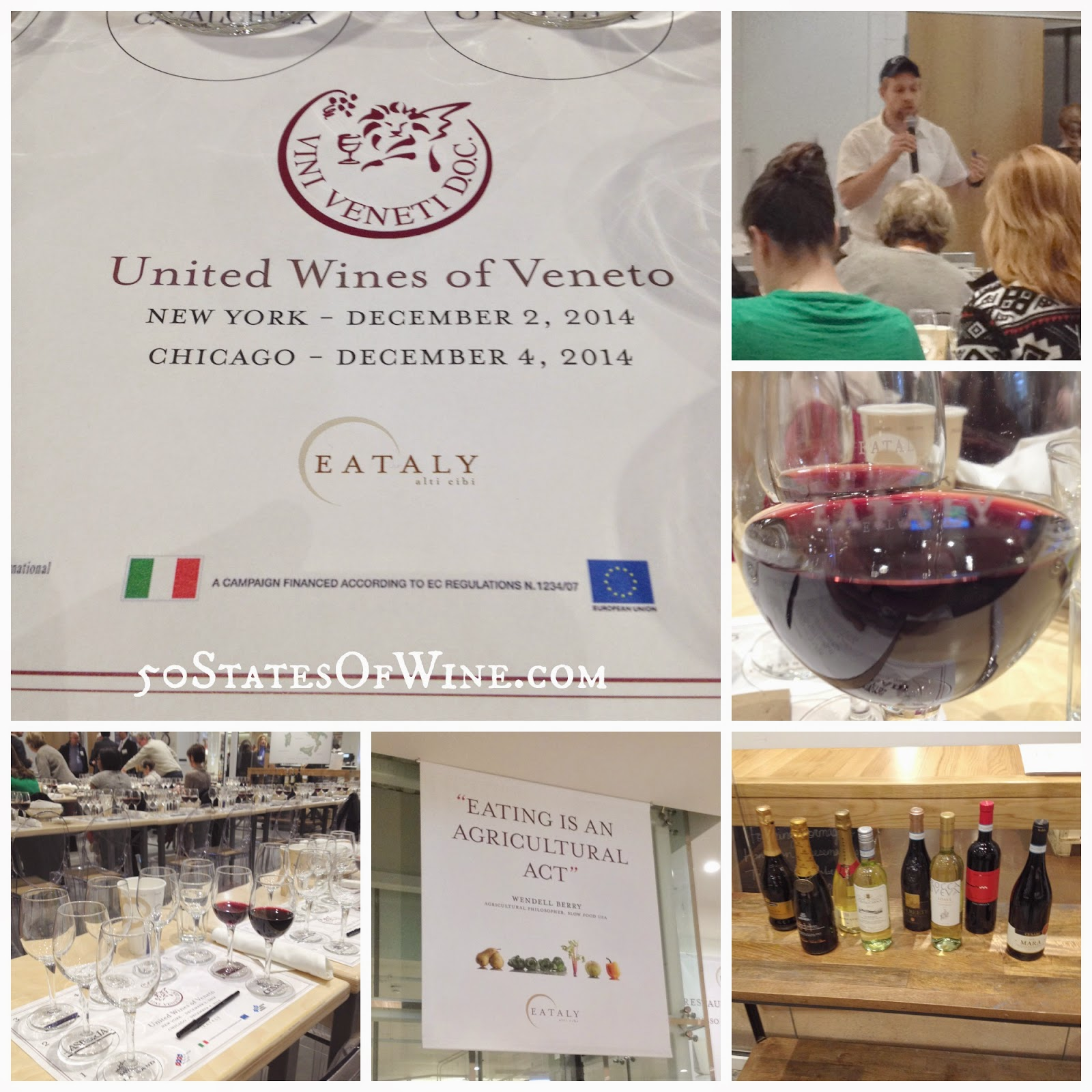 United Wines of Veneto Master Class