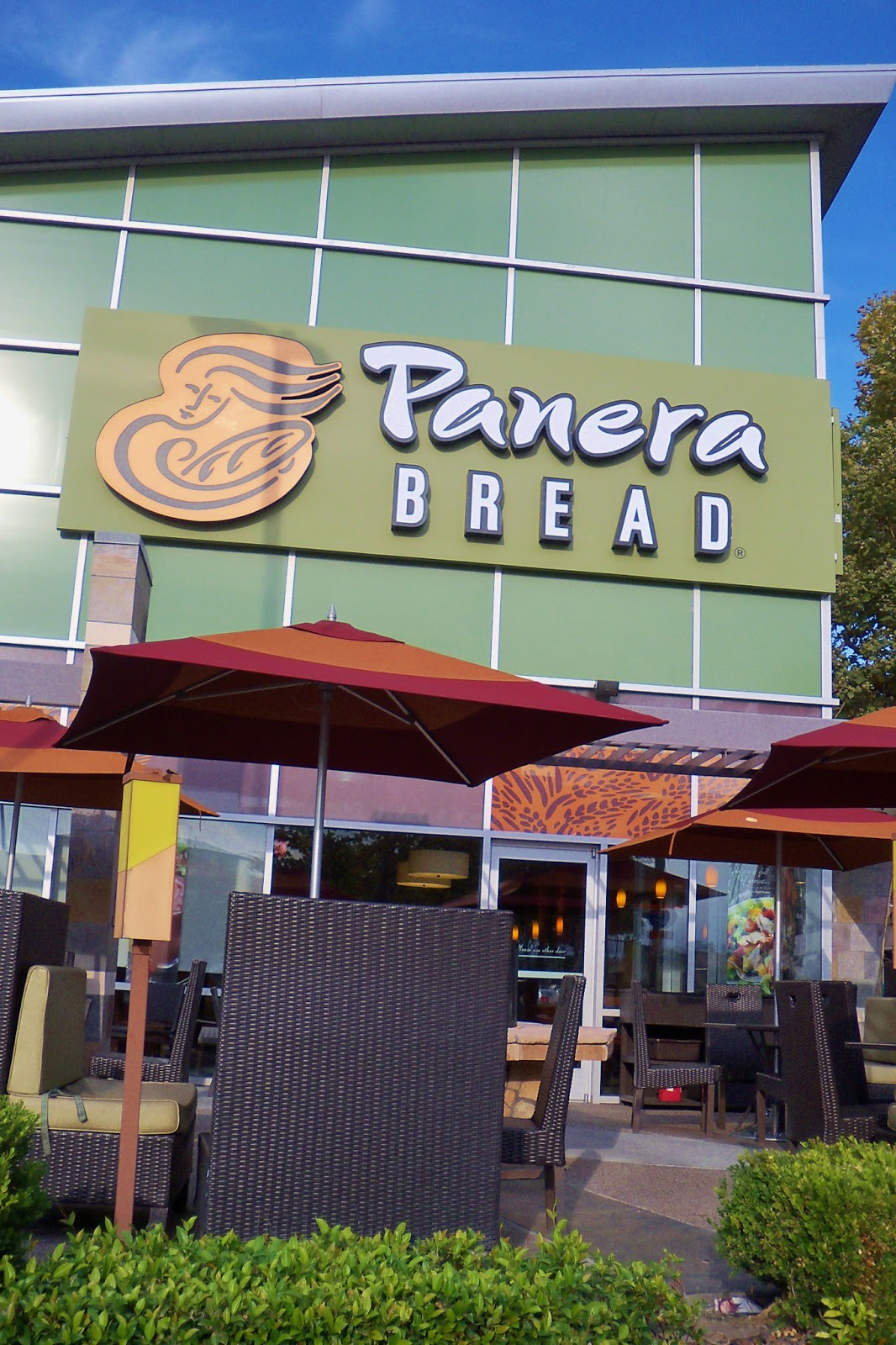 OC FOOD JOURNEY : PANERA BREAD