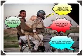 Eid-mubarak-funny-sms