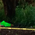 Con narcomensaje hallan esta tarde personas mutiladas, en carretera Córdoba-Cuitláhuac