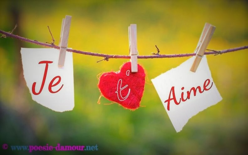 Magnifiques textes d 39 amour pour dire je t 39 aime po sie d 39 amour - T aime te faire belle ...
