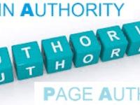 Mengenal Lebih Jauh Domain Authority dan Page Authority serta Kegunaannya pada SEO